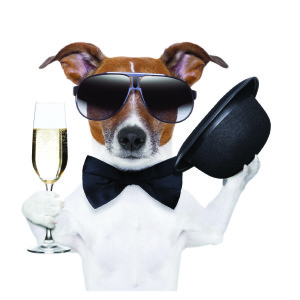 Small Markets make your event, and attendees, the big dogs in town.