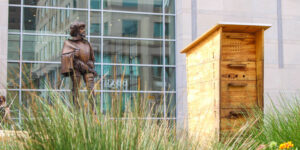 As part of its sustainability programs, the Raleigh Convention Center has installed a number of beehives.