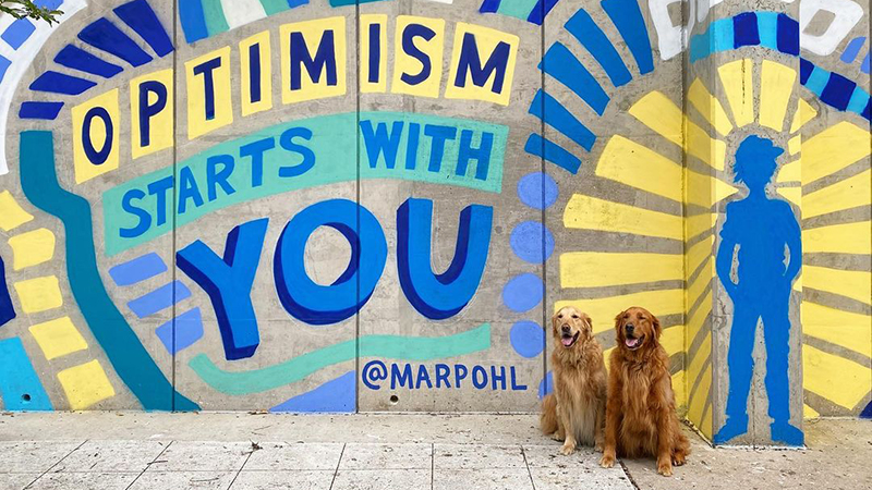 """Two golden retrievers sitting in front of """"Optimism Starts with You"""" street mural."""